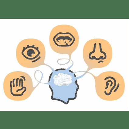 Sensory Analysis Myths   Contract Testing Inc.